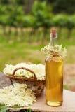 Selbst gemachter elderflower Sirup in einer Flasche lizenzfreie stockbilder