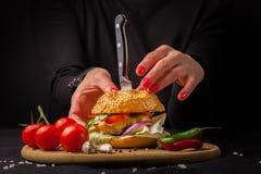 Selbst gemachter Hamburger mit Frischgemüse Stockbilder