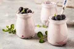 Selbst gemachter Jogurt mit frischer Blaubeere und Nüssen Stockbild