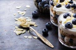 Selbst gemachter Jogurt mit Granolamuesli und -blaubeeren stockfotos