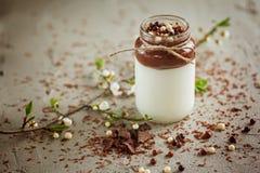Selbst gemachter Jogurt mit Schokoladencreme und Praline fallen stockfoto