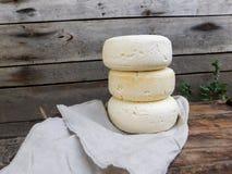 Selbst gemachter Käse Lizenzfreie Stockfotografie