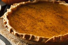 Selbst gemachter Kürbiskuchen für Thanksigiving Stockbild