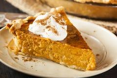 Selbst gemachter Kürbiskuchen für Thanksigiving Stockfotos