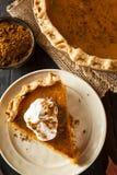 Selbst gemachter Kürbiskuchen für Thanksigiving Lizenzfreies Stockbild