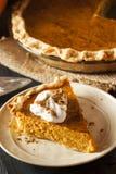 Selbst gemachter Kürbiskuchen für Thanksigiving Stockbilder