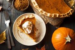 Selbst gemachter Kürbiskuchen für Thanksigiving Stockfotografie