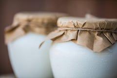Selbst gemachter Milchjoghurt in den Gläsern stockfoto