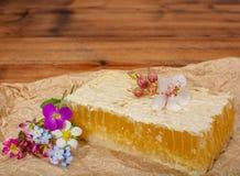 Selbst gemachter organischer Honig in der Bienenwabe vom Bauernhofbienenhaus auf Berg Stockfoto