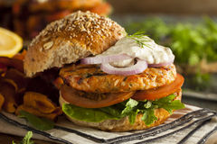 Selbst gemachter organischer Salmon Burger lizenzfreies stockfoto