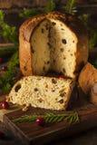 Selbst gemachter Panettone-Frucht-Kuchen stockfotos