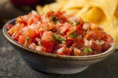 Selbst gemachter Pico De Gallo Salsa und Chips lizenzfreies stockbild