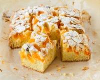 Selbst gemachter rustikaler Aprikosenkuchen Lizenzfreie Stockfotografie