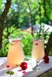 Selbst gemachter Saft der rosafarbenen Blumenblätter Lizenzfreies Stockfoto