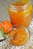 Selbst gemachter Tangerinestau oder -marmelade lizenzfreie stockfotos