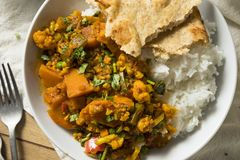 Selbst gemachter würziger Gemüse-Curry des strengen Vegetariers Lizenzfreie Stockfotos