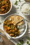 Selbst gemachter würziger Gemüse-Curry des strengen Vegetariers Stockbilder