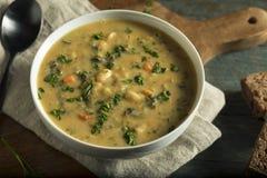 Selbst gemachter weißer Bean Soup Lizenzfreies Stockbild