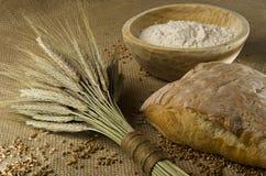 Selbst gemachtes Brot Lizenzfreies Stockfoto