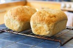 Selbst gemachtes Brot Lizenzfreie Stockfotografie