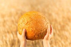 Selbst gemachtes Brot in den Händen Lizenzfreie Stockbilder