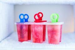 Selbst gemachtes Eis am Stiel mit Wassermelone Lizenzfreie Stockbilder