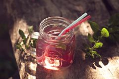 Selbst gemachtes erneuerndes kaltes rasberries Getränk Stockbilder