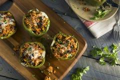 Selbst gemachtes Fleisch und Reis angefüllter grüner Pfeffer Stockfotos