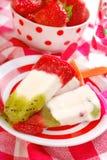 Selbst gemachtes Frucht Eiscreme Stockfotografie