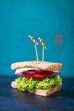 Selbst gemachtes geschmackvolles vegetarisches Sandwich mit Frischgemüse und Käse Lizenzfreies Stockfoto