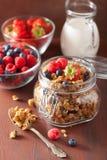 Selbst gemachtes gesundes Granola im Glasgefäß und in den Beeren Stockbild