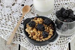 Selbst gemachtes Granola mit Jogurt und Brombeere, gesundes Frühstück Lizenzfreie Stockfotografie