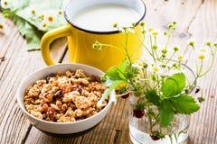 Selbst gemachtes Granola und Becher Milch Lizenzfreies Stockbild
