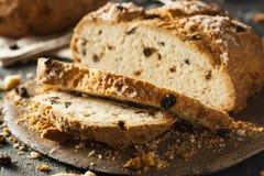 Selbst gemachtes irisches Soda-Brot Stockfoto
