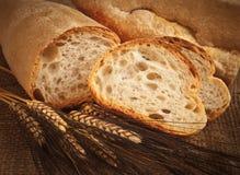 Selbst gemachtes italienisches Brot mit den Ohren des Weizens Lizenzfreie Stockbilder