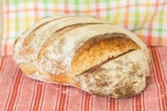 Selbst gemachtes Sauerteigbrot Frisch gebacken, bis knusperig lizenzfreies stockfoto