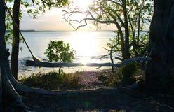 Selbst gemachtes Schwingen für das Aufpassen des Sonnenuntergangs durch das Wasser umrandet mit Blendenfleck Lizenzfreies Stockfoto