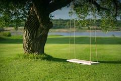 Selbst gemachtes Schwingen, kein Dekor, angebracht am alten Weidenbaum Lizenzfreie Stockfotos