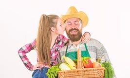 Selbstgezogene im Garten arbeitende und erntende Ernte der Landwirtfamilie Organisches Gemüse des Familienbauernhofes Vaterlandwi stockfotografie