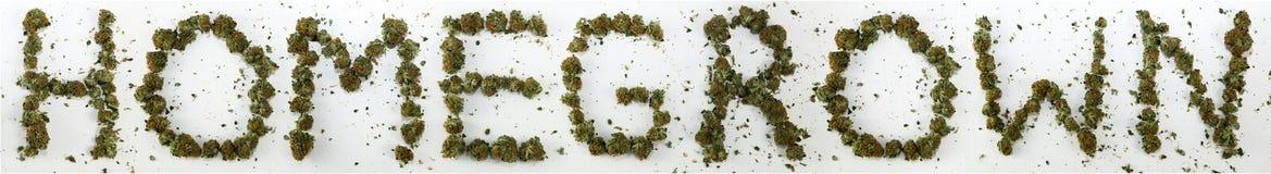 Selbstgezogenes buchstabiert mit Marihuana Stockbilder