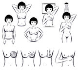 Selbstprüfung, Brustkrebsprüfung stock abbildung