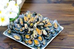 Selcted ostrość odparowany mussel na bielu talerzu Fotografia Stock
