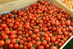 Selctive-Fokus des Stapels der roten Tomate im hölzernen Behälter Lizenzfreies Stockbild