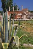 Selcuk ruins Royalty Free Stock Image