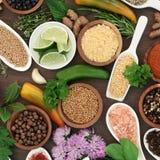 Seleção culinária da erva e da especiaria Imagens de Stock Royalty Free