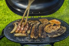 Seleção da carne que grelha sobre os carvões fotos de stock royalty free