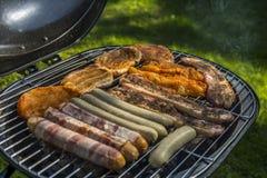 Seleção da carne que grelha sobre os carvões foto de stock royalty free