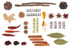 Seleção da especiaria e da erva Imagem de Stock Royalty Free
