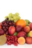 Seleção da fruta fotos de stock royalty free