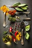 Seleção das ervas e das especiarias Fotografia de Stock
